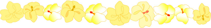 Yellow Orchid Flower Border Clip Art, Free Floral Scrapbook Graphics