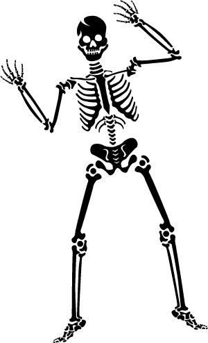 154 also Fitness Humor in addition Mesh info besides Xray Skeleton Human as well The Average Human Body Contains Enough Bones. on orthopedic cartoon bones