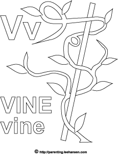 Letter V Activity Page Vine Alphabet Coloring Sheet
