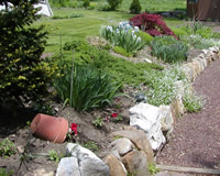 garden flowers and rock walls in spring