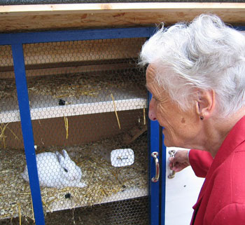 Active senior woman with hobby pet rabbit